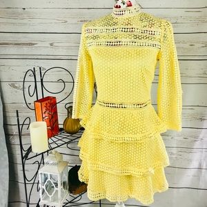 Pretty little thing 10 lace see through dress